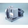Gardner Denver Welch Vacuum Pumps, Two-Stage Belt-Drive, DUOSEAL Series, Welch 1376B-01 Model 1376 Series — 300 L/min. (10.6 cfm) Free Air Displacement Vacuum Pump