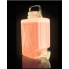 Nalge Nunc Rectangular Carboys with Spigot and Handle, Fluorinated High-Density Polyethylene, NALGENE DS2327-0020